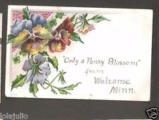 Vtg Postcard Only a Pansy Blossom from Welcome Minn MN Minnesota 1908