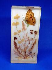 DINA-Brillant Acrylbild Bild mit Schmetterling u. Pflanzen ca. 7 x 15 cm + Öse