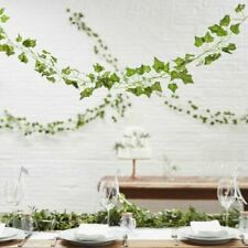 Decorative Vines 5 X 2 Metre Party Decor Ginger Ray Botanics Ivy