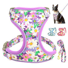 Dog no pull Harness and Leash set Reflective Breathable Floral Dog Control Vest
