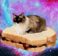 """Funny Cat Flying Peanut Butter Jelly Sandwich Outer Space Kitty Love 2"""" Sticker"""