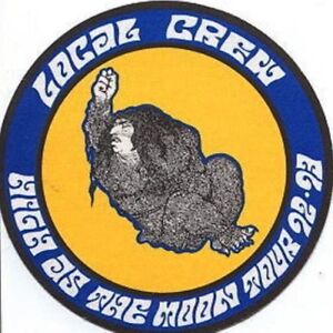 BLACK CROWES 1992 HIGH AS THE MOON TOUR BACKSTAGE LOCAL CREW PASS / NMT 2 MINT