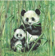 Lot de 2 Serviettes en papier Panda Bambou Decoupage Collage Decopatch