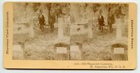 Old Huguenot Cemetery St. Augustine Florida Vintage Stereoview Photo