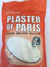Mont Marte Plaster of Paris 1KG Casting Moulding Sculpting Project Craft Art
