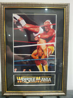 Hollywood Hulk Hogan Mounted & Framed Retro Memorabilia Retro Wrestling