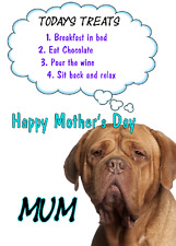 Dogue De Bordeaux Dog Mother's Day Card Treats chmd162 A5 Personalised Greetings