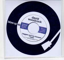 (EF210) David Woodcock, Beggars Can't Be Choosers - 2013 DJ CD