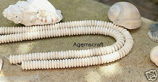 120 Off white Howlite flat saucer disk rondelle beads 10x3mm Craft Art Beading