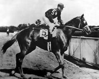 1935 Champion Racehorse DISCOVERY Glossy 8x10 Photo Print Thoroughbred Horse