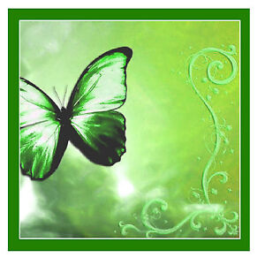 GREEN BUTTERFLY COASTERS - SET OF 4 FUN COASTERS - GIFT/ PRESENT - BRAND NEW