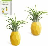 2 Pack Air Plant Pineapple Planter Tillandsia Holder With Magnet Wall Home Decor