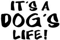 IT'S A DOGS LIFE STICKER Funny Caravan Bailey Swift JDM Car Novelty Vinyl Decal
