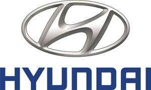 824113S010 Hyundai Glassfr dr window lh 824113S010