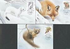 Aland Finland 2004 Maxi Card nr 46-48 - Animals - Ermine - Red Fox - Pine Marten