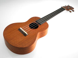 Ayers Uluru Mahogany Concert Ukulele Solid Wood with Case