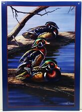 The Boys Water Fowl Birds Ducks Meger Art Metal Sign