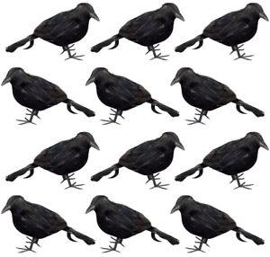 "12 Pack Small 5"" Black Crow Raven Bird Men's Halloween Prop Decoration Decor"