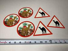 Dubai Uae Sticker Decal United Arab Emirates Camel Racing Palm Trees Middle East