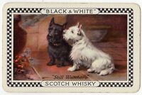 Playing Cards Single Card Old BLACK WHITE Whisky Advertising TERRIER DOGS Dog 5