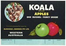 KOALA, Vintage Tasmania, Australia, *AN ORIGINAL CRATE LABEL*   S32