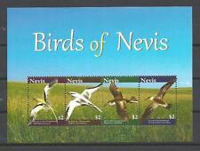 Nevis 2010 pájaros colección hoja de 4 sellos nueva 1er elección