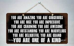 """781HS You Are Amazing You Are Gorgeous 5""""x10"""" Aluminum Hanging Novelty Sign"""