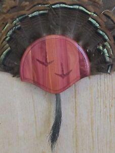 Solid Cedar Turkey Fan / Beard Mounting Kit -01 with Carved Tracks