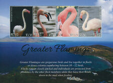 More details for nevis 2021 mnh birds on stamps greater flamingo flamingos 4v m/s