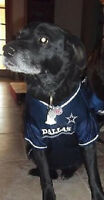 Dallas Cowboys Dog Jersey NFL Officially Licensed Football Pet Product Gear