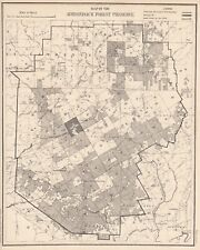 Original Antique New York Adirondack Township 40 Forest Preserve Map 1901