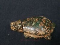 China Old Natural Green Jade Hand Carved Turtle Statue Pendant Decoration Gift