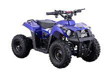 Electric Battery Four Wheeler ATV 500W 36V Blue Kids Ride On Mini Quads Toy New