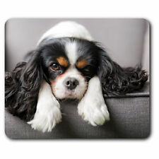 Computer Mouse Mat - Cavalier King Charles Spaniel Dog Office Gift #12388