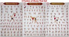 (Muay Thai) Kick Boxing Collection for Training Technical Martial Art Set Poster