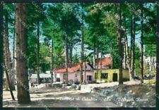 Cosenza Villaggio Roseto Sila Foto FG cartolina ZKM7557