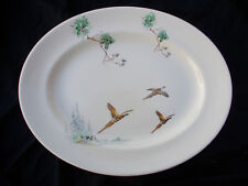 Royal Doulton THE COPPICE Large Oval Meat Dish. Diameter 15¼ x 11¼ inches.