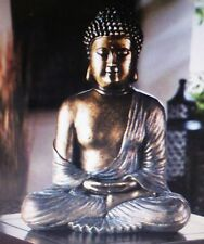 Buddha Statue Beautiful Sitting Serene Expression Resin