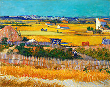 The Harvest by Vincent van Gogh A1+ High Quality Canvas Print