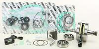 WISECO ENGINE REBUILD KIT PWR161A-100