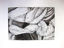 Tulipmania 12-edizione limitata firmato morsura da studio Angela