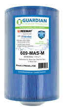 Spa Filter Replaces Pleatco PMA40L-F2M-M - Use in Down East Ft Wayne Master Spas