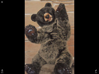 Dream Bears 2018 ~Cute URSULA~ Exceptional Bear Loves Bear HUGS Like Charlie!
