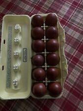 10 + Black Copper Maran  Hatching Eggs