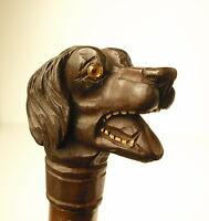 Bastone da Passeggio Antica Pomello Testata Cane Bamboo With Intagliato Wood Dog