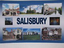 SALISBURY - JUMBO FRIDGE MAGNET - Cathedral, Fish Row, Stonehenge, The Close