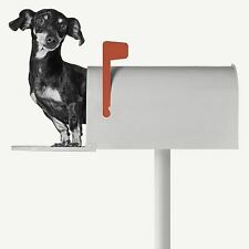 YOU'VE GOT MAIL ART PRINT BY JON BERTELLI dachshund in mailbox dog 12x12 poster