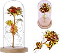Rose Éternelle sous Cloche Fleurs Séchées Artificielles Doré Cadeau Fête de Noël