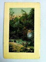 Vintage Postcard Forest with Running Water Scene Posted 1910