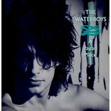 The Waterboys - A Pagan Place - New Vinyl LP